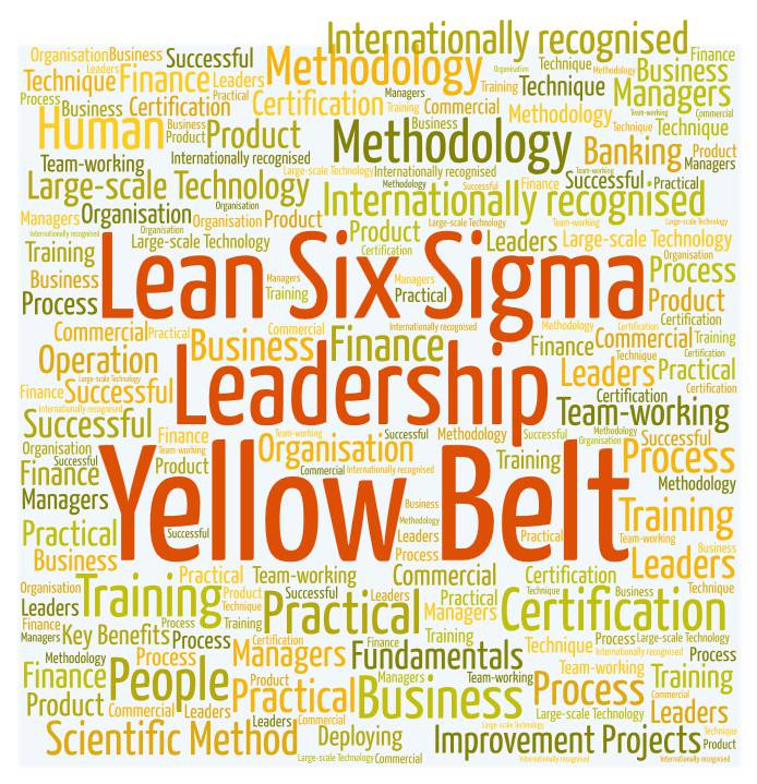 Lean Six Sigma Leadership Yellow Belt Oxford University Department
